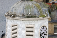 Clocktower-nesting-Kittiwakes-27th-May-19-art