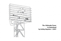 Kittiwake-Tower-sketch-by-Ashley-Bayston