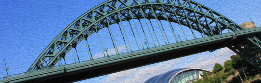 Tyne Bridge Newcastle Gateshead Kittiwake Colony