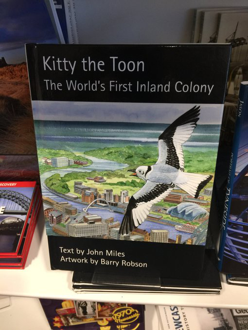 Kitty the Toon - The Worlds First Inland Colony
