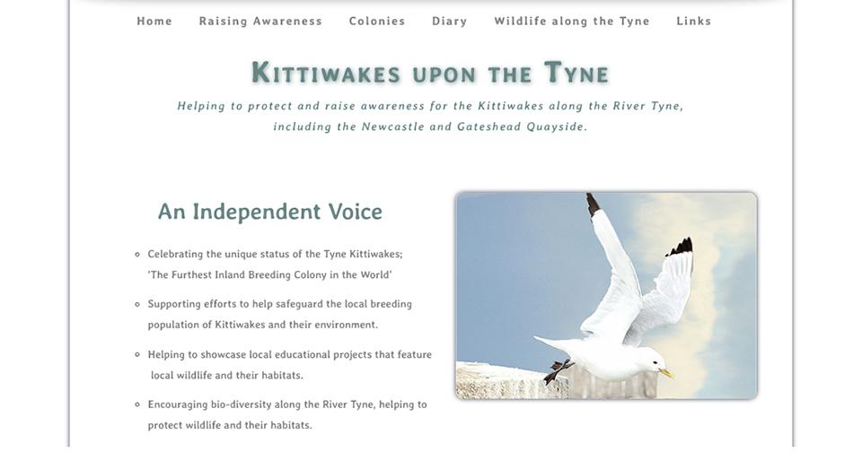 (c) Tynekittiwakes.org.uk