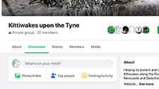 Facebook Group - Kittiwakes upon the Tyne